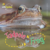 Tadpole to Frog (Lifecycles)