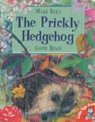 Hedgehogs For Sale In Nebraska