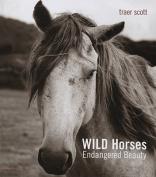 Wild Horses: Endangered Beauty