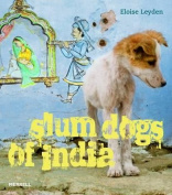 Slum Dogs of India