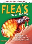 Mb Fleas New Home