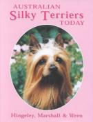 Australian Silky Terriers Today