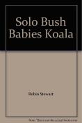 Koala (Solo bush babies)
