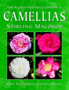 What Camellia is That?