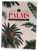 Sandstone Identifiers - Palms