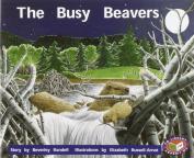 The Busy Beavers PM Level 16 Set C Orange