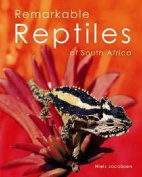 Remarkable reptiles of South Africa
