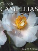 Classic Camellias