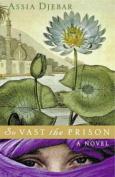 So Vast the Prison : a Novel