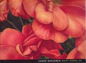 Jason Benjamin: What Binds Us