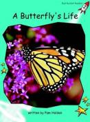 A Butterfly's Life: Fluency