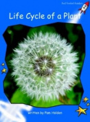 Life Cycle of a Plant: Early