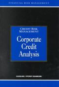 Corporate Credit Analysis