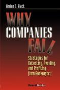 Why Companies Fail