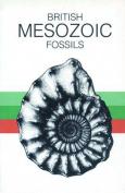 British Mesozoic Fossils