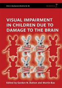 Visual Impairment in Children Due to Damage to the Brain