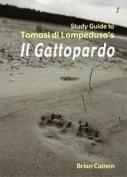 """Study Guide to Tomasi Di Lampedusa's """"Il Gattopardo"""""""