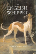 The English Whippet