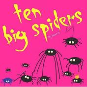 10 Big Spiders