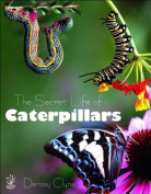The Secret Life of Caterpillars