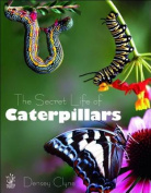 The Secret Life of Caterpillars