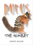 Rufus the Numbat
