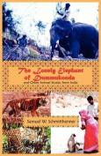 The Lonely Elephant of Dummukonda
