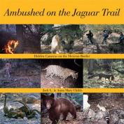 Ambushed on the Jaguar Trail