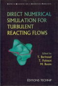 Direct Numerical Simulation for Turbulent Reacting Flows