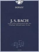 Sonata for Flute and Harpsichord in E-Flat Major, Bwv 1031