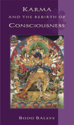 Karma and the Rebirth of Consciousness