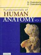 Fundamentals of Human Anatomy
