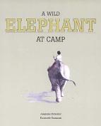 A Wild Elephant at Camp