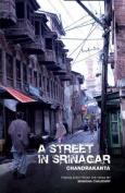 A Street in Srinagar