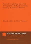 Fossils and Strata
