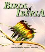 Birds of Iberia