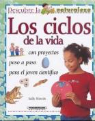 Los Ciclos de La Vida [Spanish]