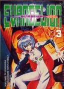 Neon Genesis Evangelion: v. 3