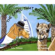 The Camel That Got Away