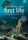 First Life  [Region 4]