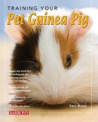 Training Your Pet Guinea Pig