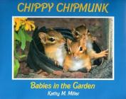 Celtic Sunrise CEL984089314 Chippy Chipmunk Babies in the Garden