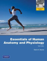 Essentials of Human Anatomy and Physiology with Essentials of Interactive Physiology CD-ROM