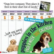 Puppies in the Kitchen 2012 Calendar