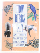 How Birds Fly and Other Marvels of the Animal World