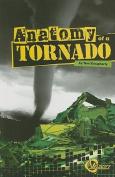 Anatomy of a Tornado (Disasters