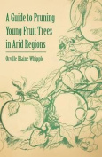 A Guide to Pruning Young Fruit Trees in Arid Regions