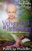 Velvet Ball and the Broken Fairy