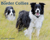 Just Border Collies Wall Calendar