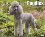 Just Poodles